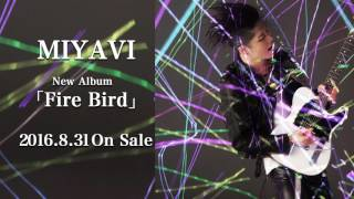 miyavi「she dont know how to dance」