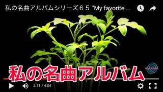 """私の名曲アルバムシリーズ65 """"My favorite music video album series#65"""""""