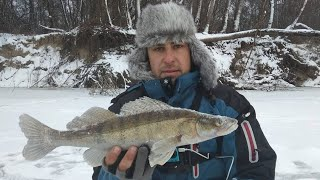 СУДАК НА БАЛАНСИР. Зимняя рыбалка. Ловля судака зимой