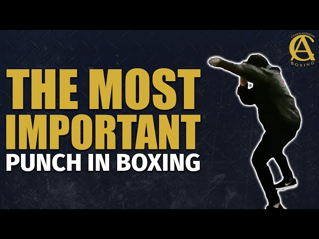 The Most Important punch In Boxing! #Shorts