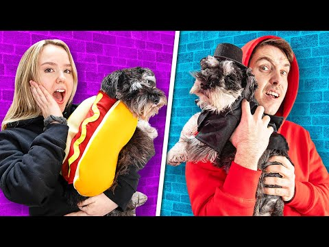 Dressing Up Lazarbeams Dog's At The Click Office!