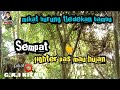 Sempat Fighter Sebelum Hujan Mikat Burung Tledekan Bambu G A I Kicau  Mp3 - Mp4 Download