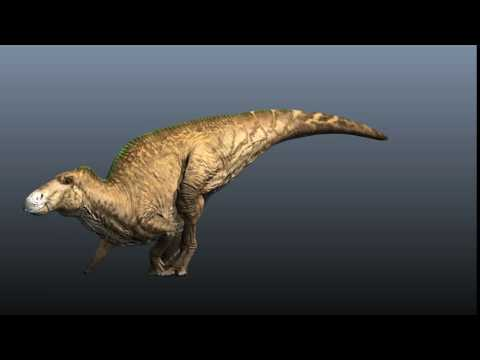 Anatosaurus Gallop