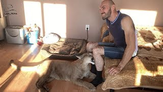 The instincts of a Puma Messi. Caring for the family