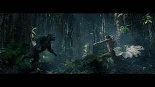 Тарзан. Легенда / The Legend of Tarzan (2016) Русский (дублированный) HD трейлер