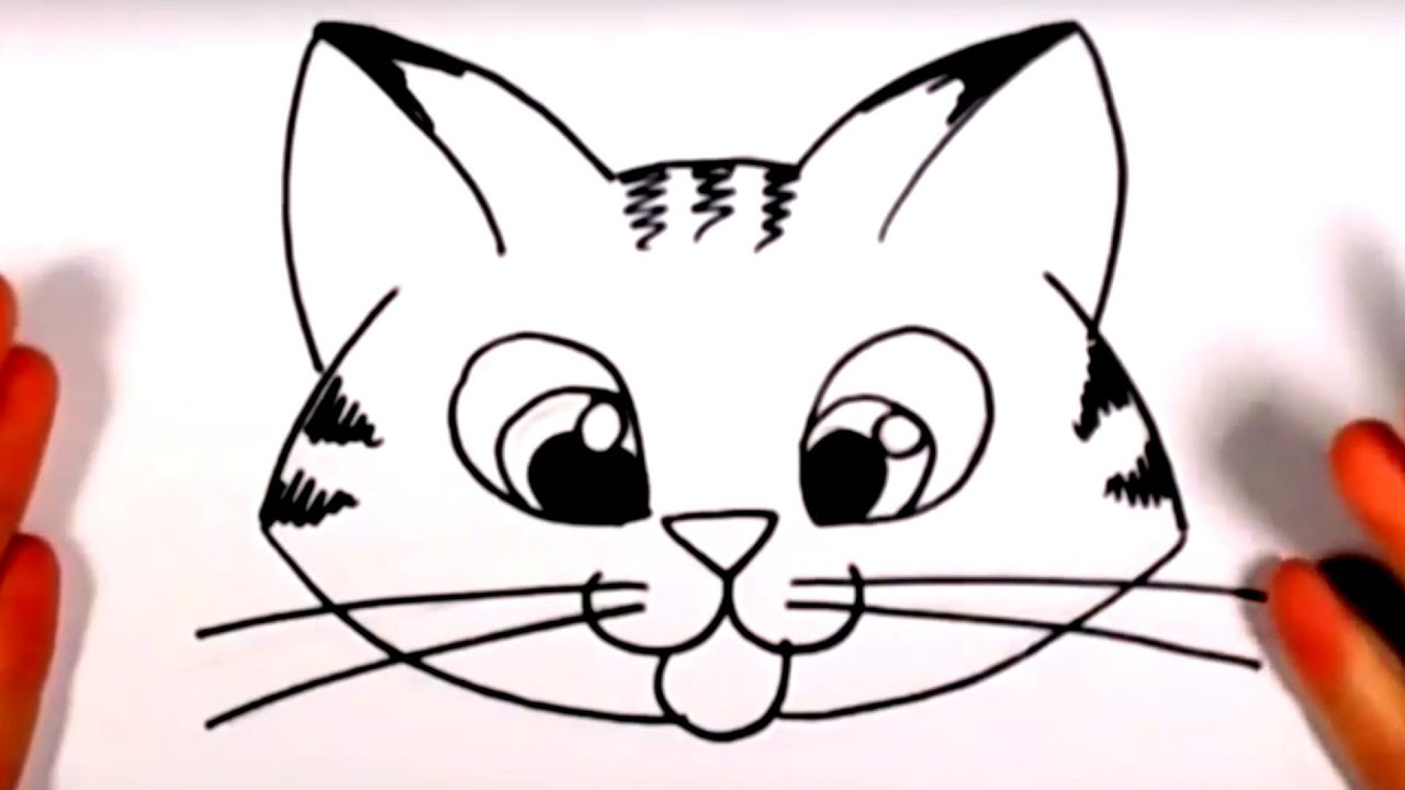 Line Drawing Of A Cat Face : How to draw a cute kitten face tabby cat drawing