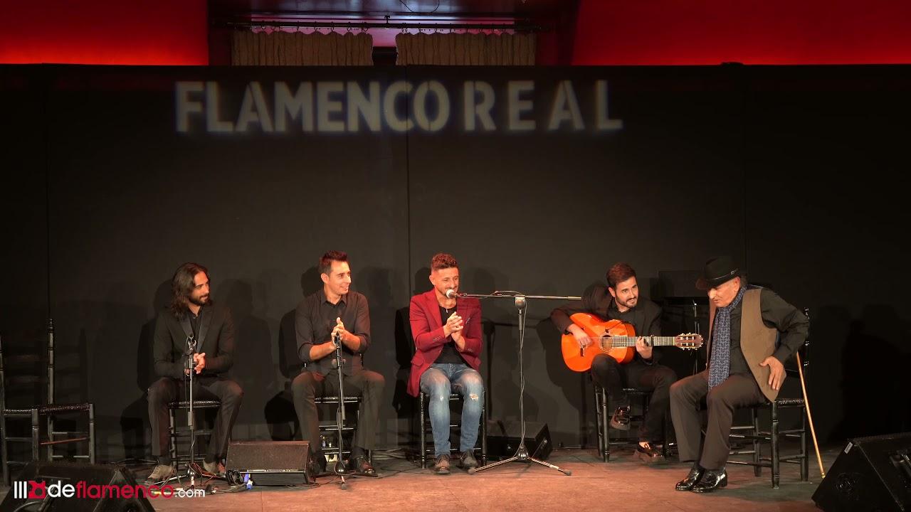 David Palomar & Carrete de Málaga en Flamenco Real