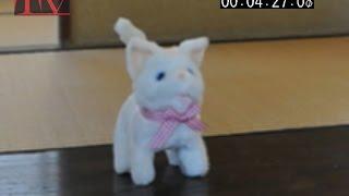 第93回奥西菓折ミュージックビデオ「今日も元気! ~猫にごはん~」 T...