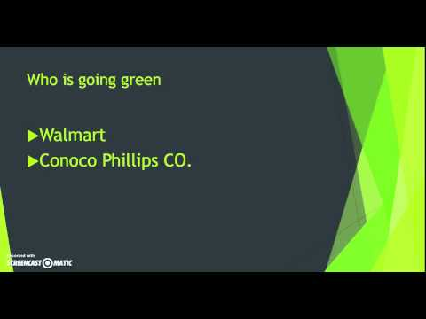Daniel Montiel-Audio Presentation on Organizations' Green Initiatives.