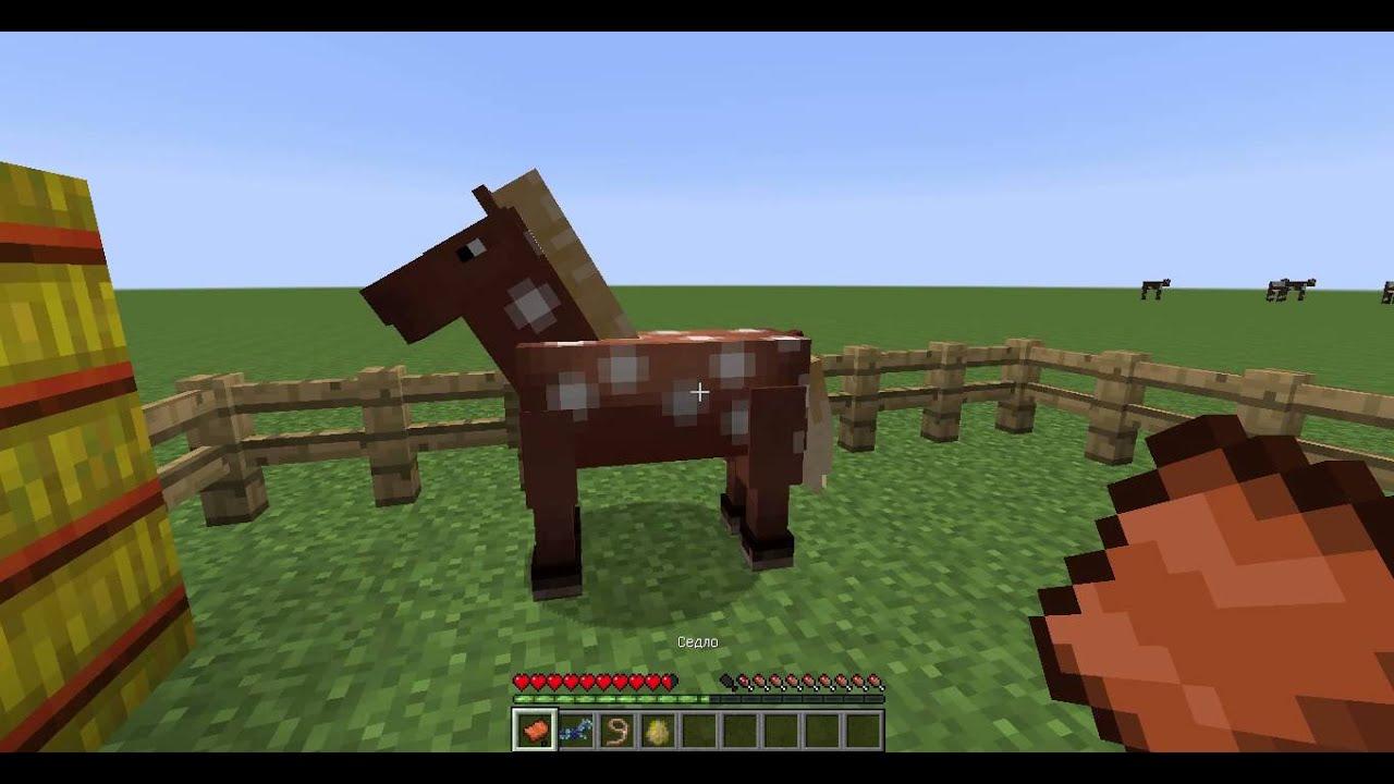 как приручить оседлать лошадь в майнкрафте #4