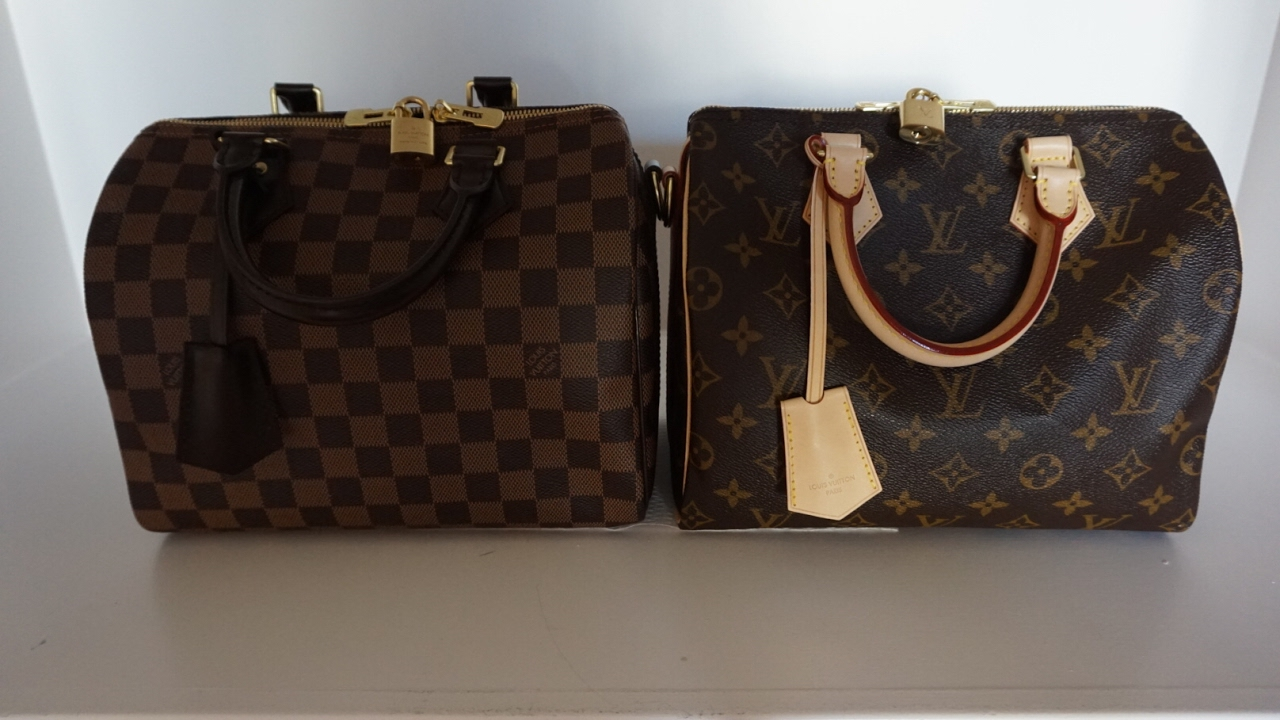 6e737519ce70 Louis Vuitton Comparison Speedy B monogram vs Damier Ebene, wear and tear  and what's in my bag