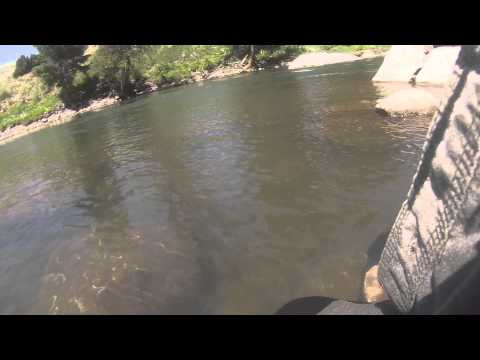 Yellowstone River Trout Fishin2014