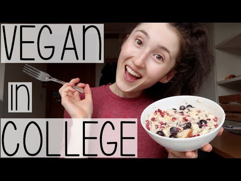 HOW TO BE A VEGAN STUDENT IN COLLEGE | GROCERY HAUL ON A BUDGET, MEAL PREP + SUPPLEMENTS