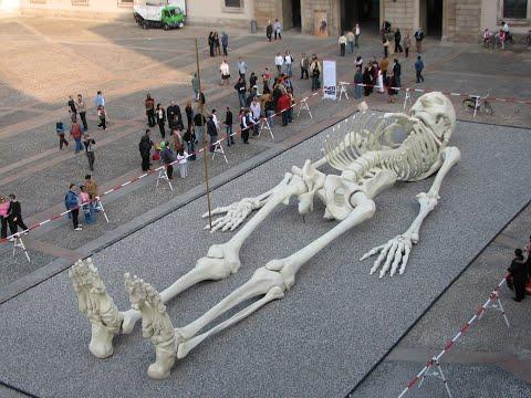 СРОЧНО ВСЕМ! В Тибете обнаружены 5-метровые мумии! Учёные в шоке. Новинка кино 20.02.2020