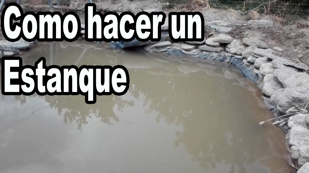 Como hacer un estanque para peces y tortugas youtube for Como construir estanques para peces