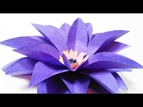 DIY paper flower Water Lily for wall backdrop decoration /arts and crafts flowers easy for kids