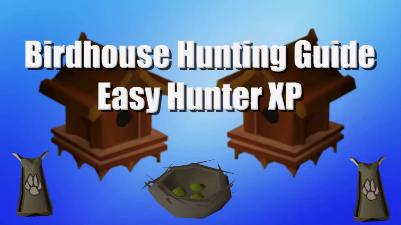 Birdhouse Hunting Guide Low Requirements Quick And Easy Hunter Exp Osrs Youtube Fortunately, it is easy to increase or decrease the size of a birdhouse hole and still use the house design you are interested in. birdhouse hunting guide low requirements quick and easy hunter exp osrs