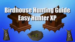 Birdhouse Hunting Guide | Low Requirements | Quick and Easy Hunter EXP [OSRS]