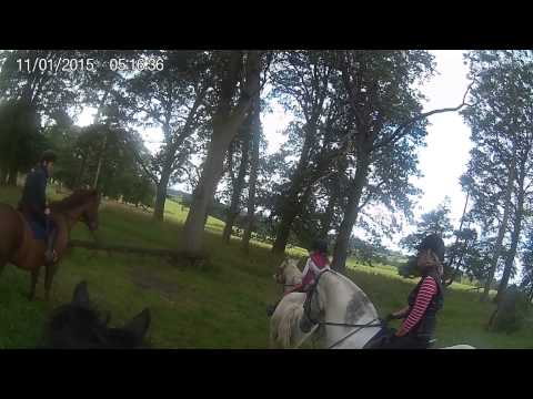Tom Yeager's video of riding at Castle Leslie #2