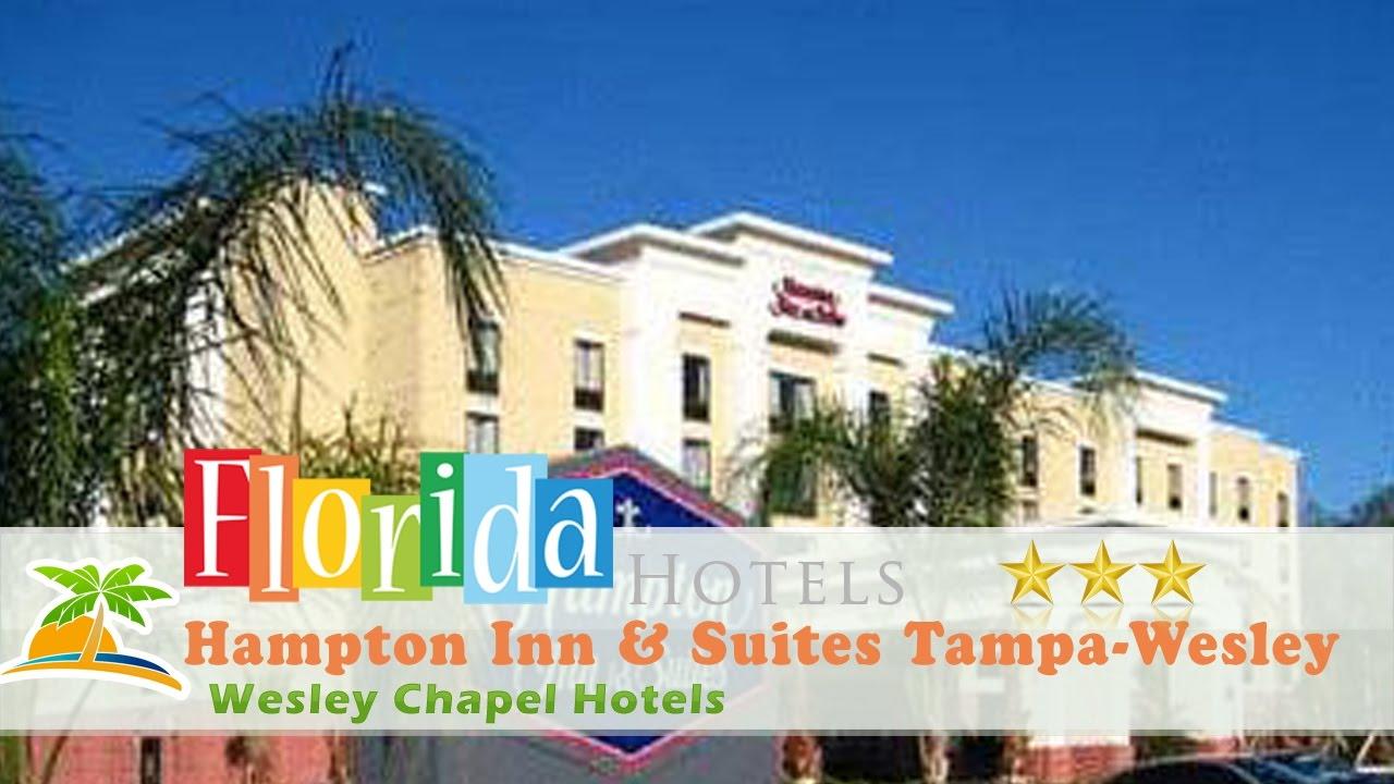 Hampton Inn Suites Tampa Wesley Chapel Hotels Florida