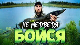 Экстремальный спуск на каракате. Рыбалка. Наловил крупной рыбы. Один в тайге.