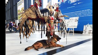 Собака-помощник - работа при раздражителях