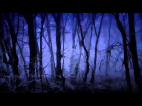 Windbruch - Only Full Dark