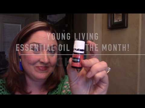 essential-oil-of-the-month-series-|-helichrysum-{young-living}