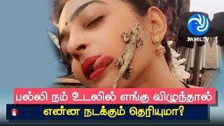 பல்லி நம் உடலில் எங்கு விழுந்தால் என்ன நடக்கும் தெரியுமா? Palli vilum palangal in Tamil - Tamil TV