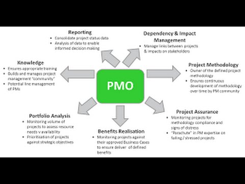 23. How to implement a PMO