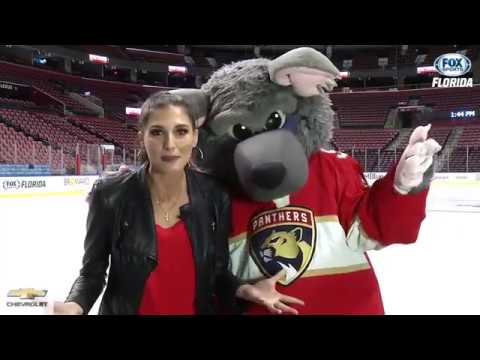 Hockey 101: What's the link between the Florida Panthers and rats?