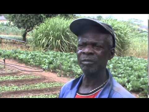 Caritas masvingo  Silveira dam documentary