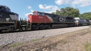 AC44C6M Leading NS 391 with Six Locomotives - Mixed Freight
