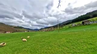 #Simonswald #Germany Simonswald | Baden-württemberg | Germany