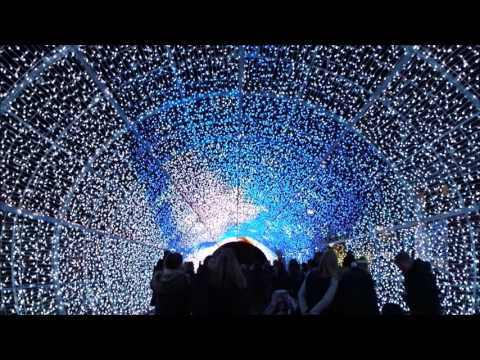 Tunnel of Lights The only one in Europe 2016/ City decoration