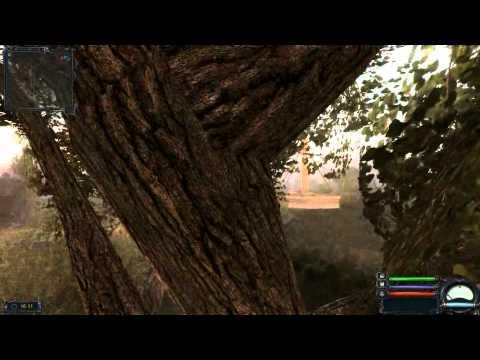 Чистое небо ничейный рюкзак на дереве рюкзак wenger 30532499 отзывы