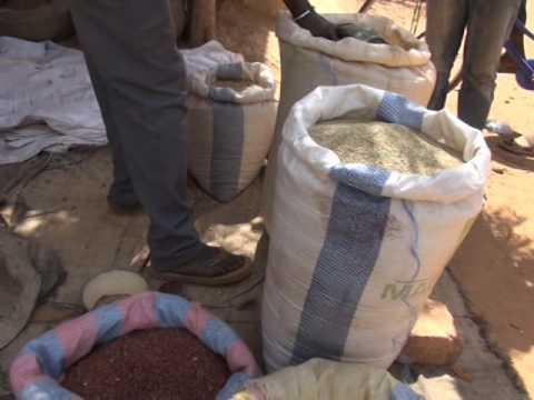 Conférence sur le commerce des céréales en Afrique de l'Ouest