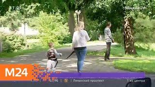 Смотреть видео В Сети обсуждают новое видео с ребенком на поводке - Москва 24 онлайн