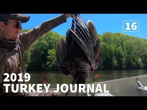 2019 TENNESSEE PUBLIC LAND TURKEY HUNTING - 2019 Turkey Journal | Episode #16 |
