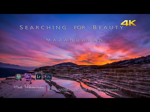 Searching For Beauty | 4K Timelapse