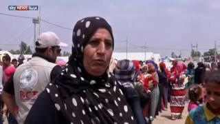 مجموعة شبابية تقدم مساعدات للنازحين في مخيم بقضاء مخمور