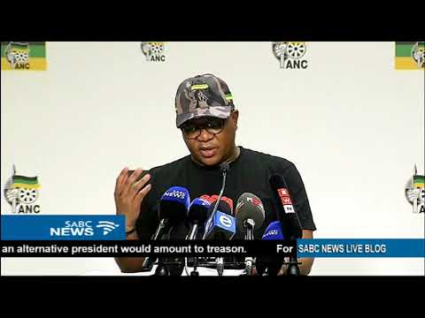 ANC committee wants members to elect leaders directly