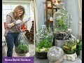 TERRARIUM :SEALED BOTTLE GARDENS: Step by Step / Shirley Bovshow