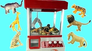 Wild Animals Surprise Toys Game in The Claw Machine │ Learn Animals Names For Kids