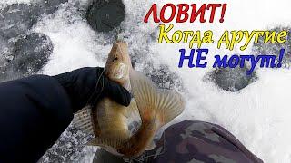 Убойный Балансир на Судака Рыбалка зимой ловля на реке 2020