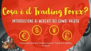 Introduzione al mercato dei cambi valuta – Cosa è il forex? | Diario di un Trader