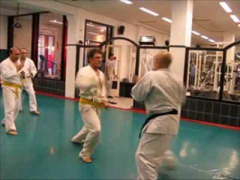 •· Free Watch Traditional Wadoryu Karate-Do Vol.1 Ido Kihon and Pinan Kata 1-5