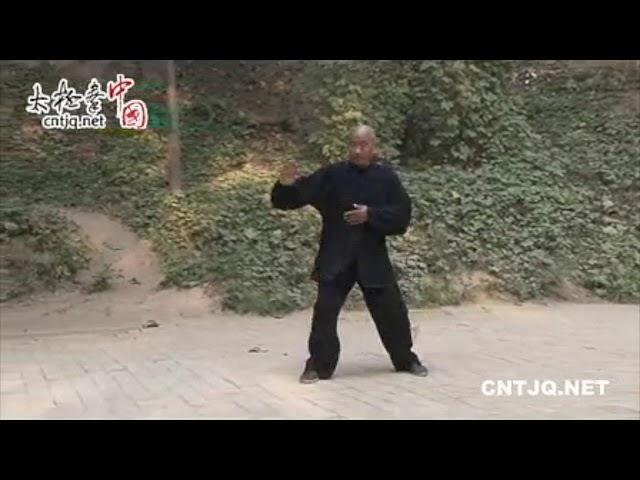 Chen Liu You - Tai Chi style Chen Xiaojia Erlu Paochui [陈氏太极拳小架 Taijiquan style Chen]