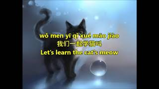 Never stop learning learn mandarin through song good luck!!! :d