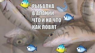 Аланья Рыбалка Что ловится Как ловят рыбу местные Alanya